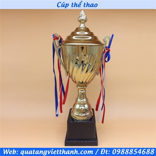 Cup thể thao 3018